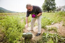 Technology takes root at Virginia Tech's Catawba Sustainability Center 'Smart Farm'
