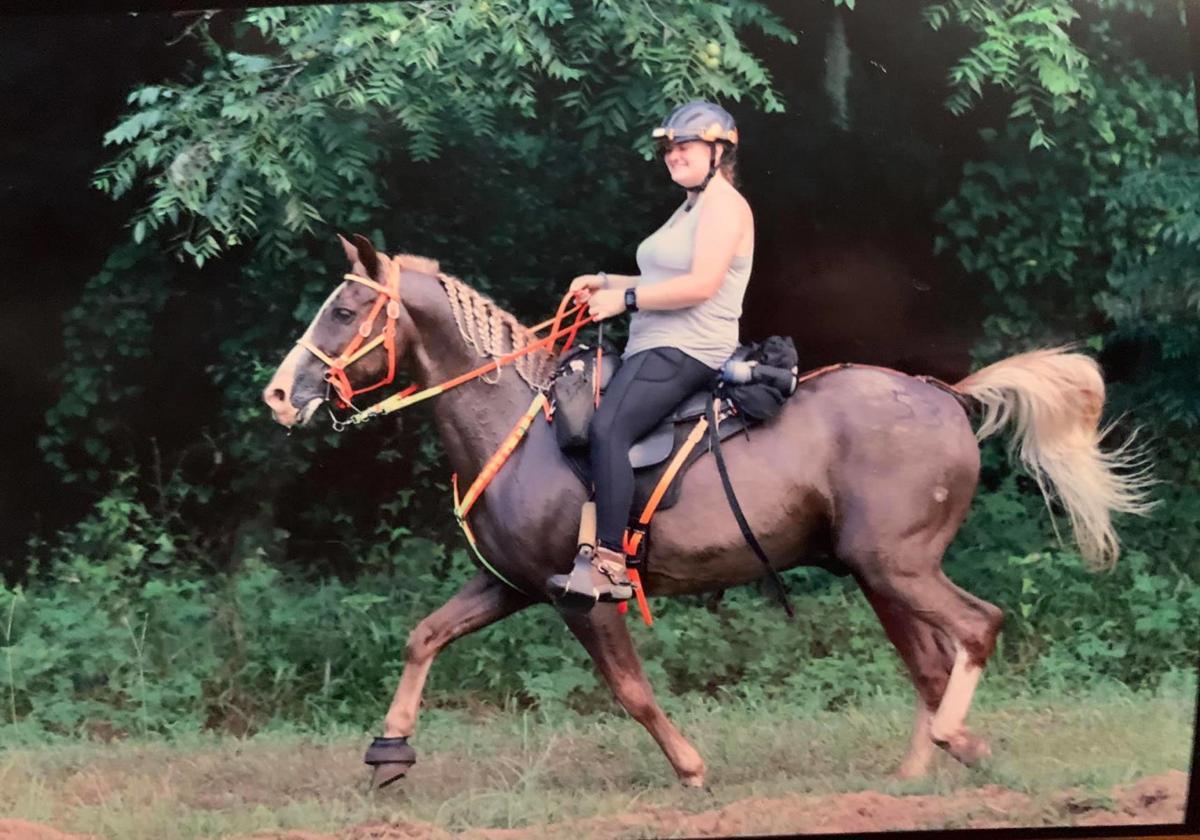 trail horse 2.jpg