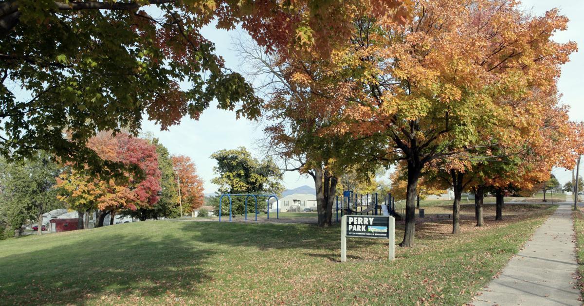 The story of HeLa: Roanoke native and scientific marvel Henrietta Lacks