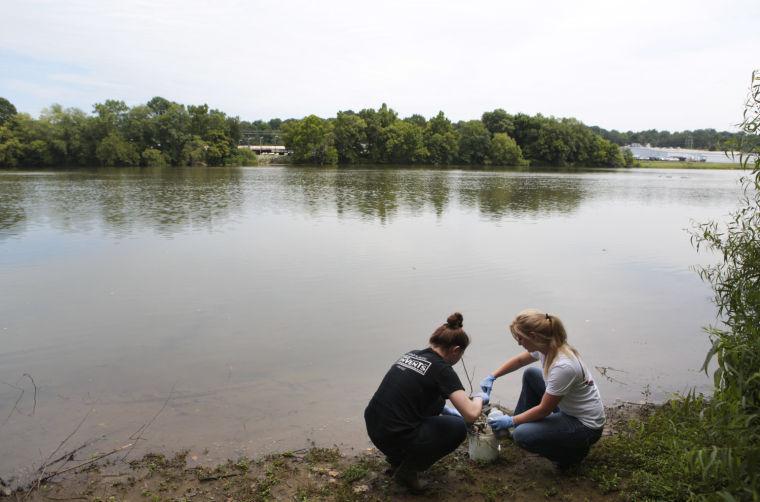 one report puts dan river coal ash spill damage at  295 million