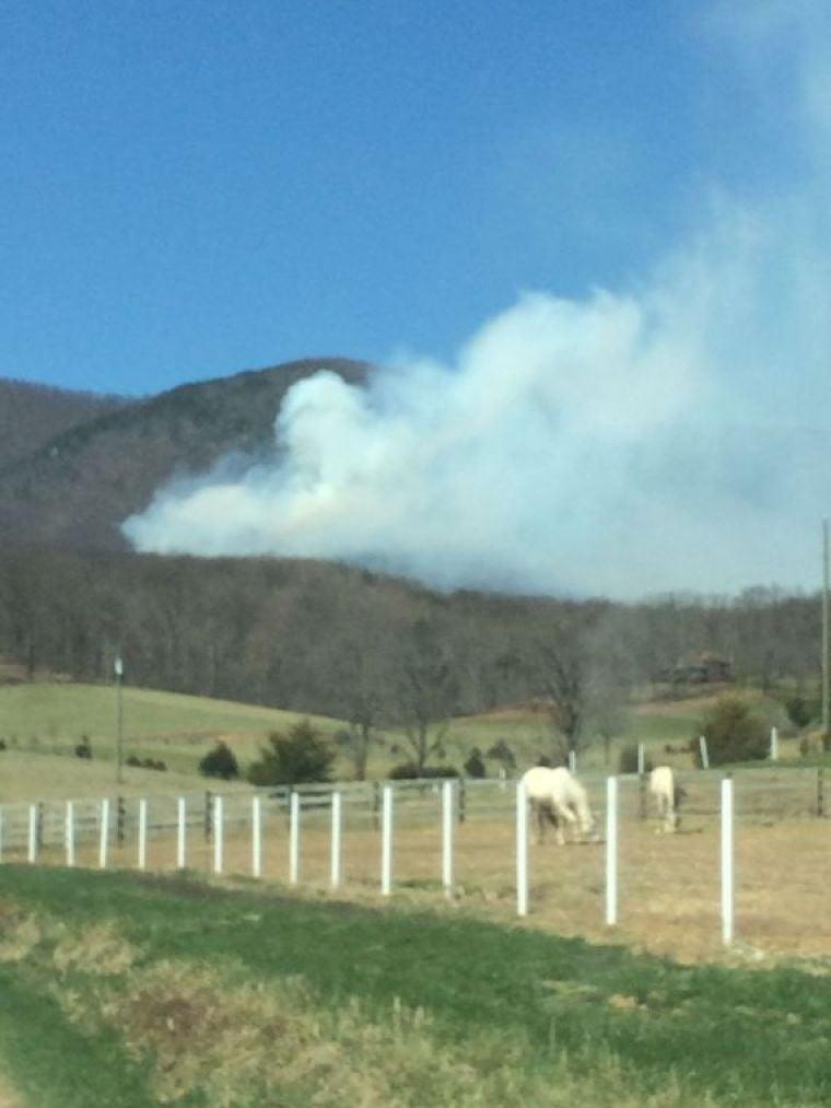 Firefighters battle Buchanan brush fire