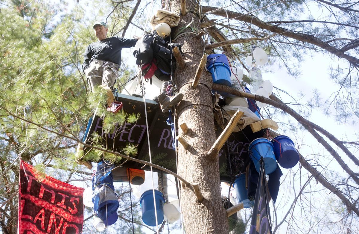 hr treesits 040419 p01
