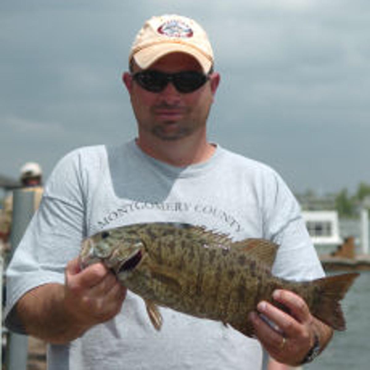 upper chesapeake bay fishing report