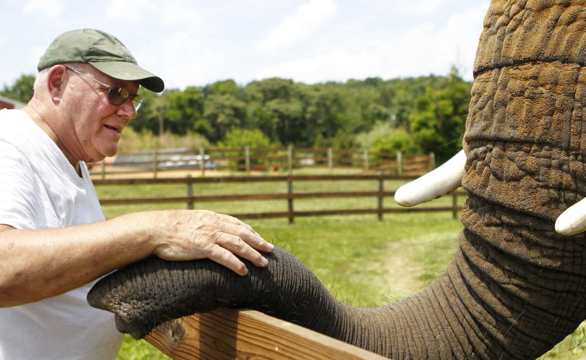 Karl Mogensen pets Asha, an African elephant at the Natural Bridge Zoo. The USDA has cited the zoo for allowing visitors to ride Asha without her handler always nearby.