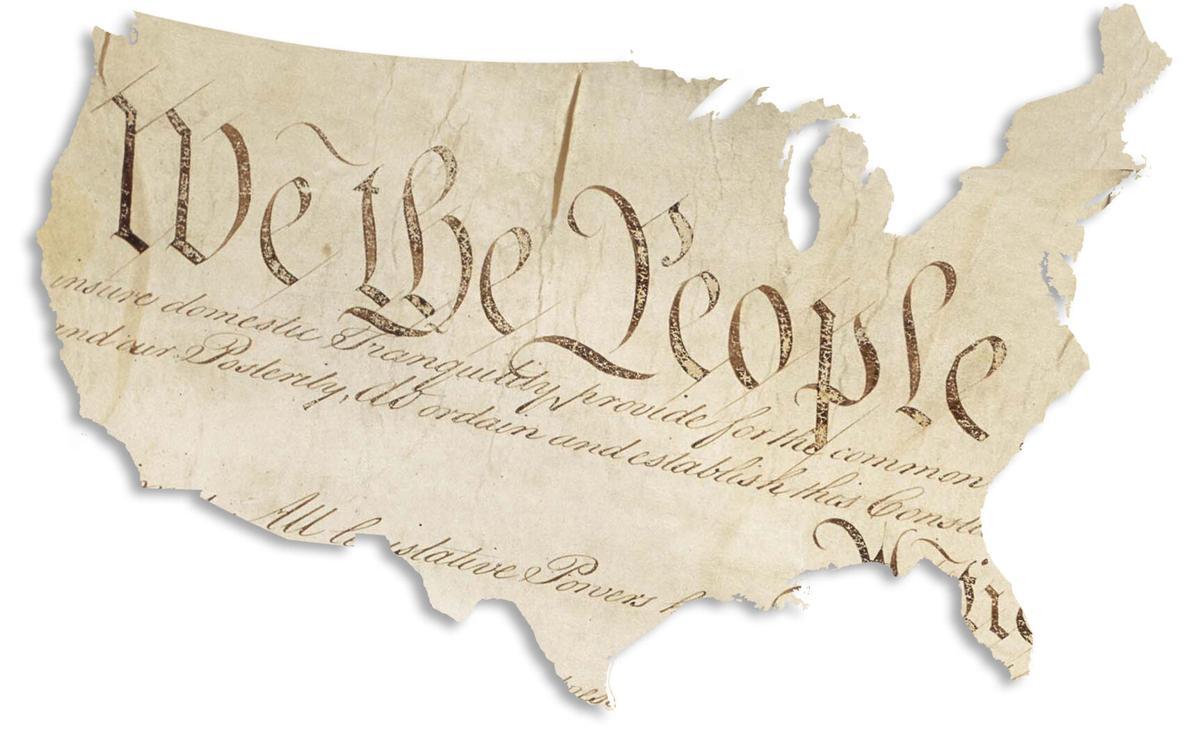 20100309 Constitution