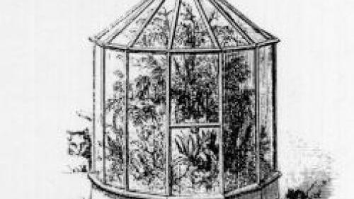 Wardian Cases Made Gardening Obsessions Possible | Archive ...