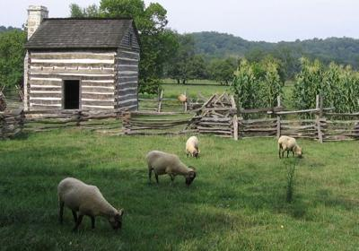 Newly formed New River Valley Sheep and Goat Club to host