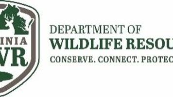 Chronic wasting disease detected for first time in Montgomery County