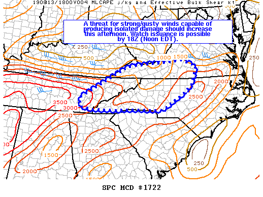 Meso Discussion for PM storms 081319