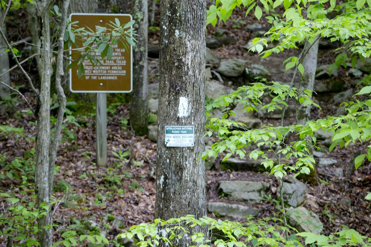 Hiker killed on Appalachian Trail identified | Crime & Courts ...