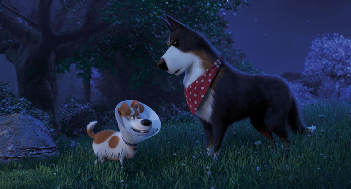 ENTER-SECRETLIFE-PETS2-MOVIE-REVIEW-MCT