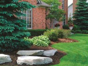 Spruce up your landscaping