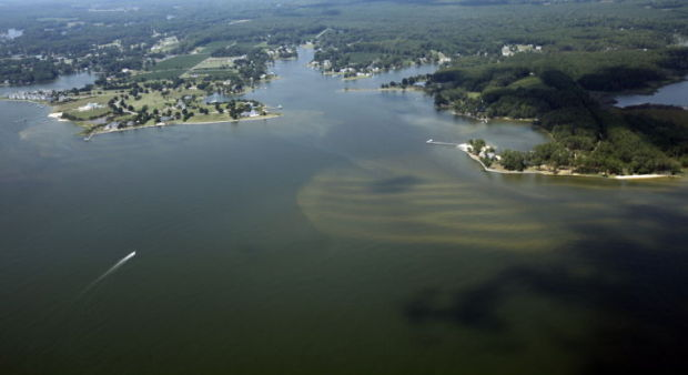 New Federal Farm Program Should Help Fight Chesapeake Bay