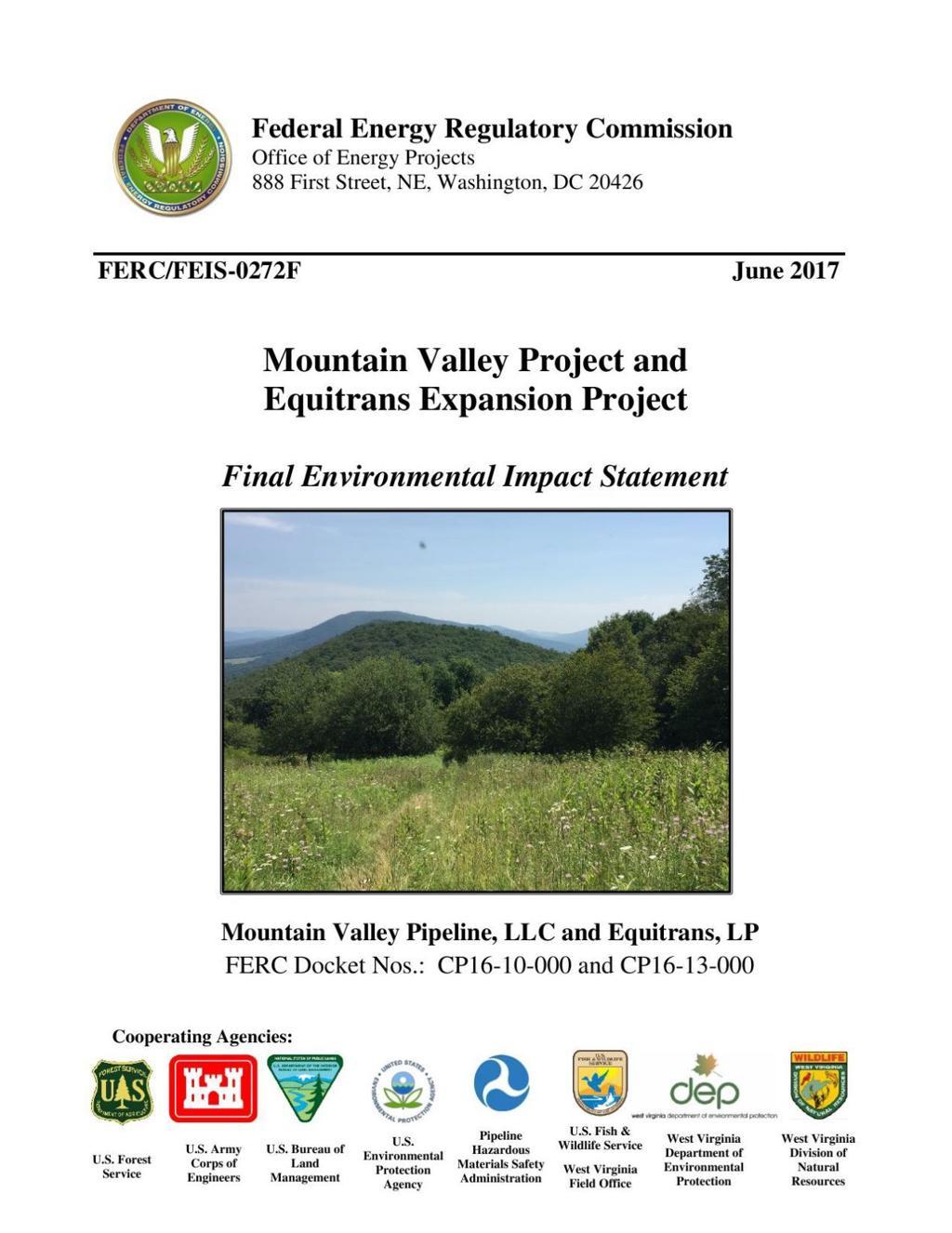 FERC's final environmental impact statement for Mountain