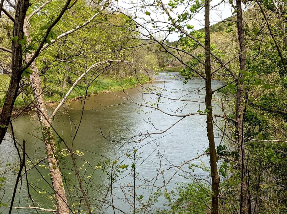 Jackson River 5