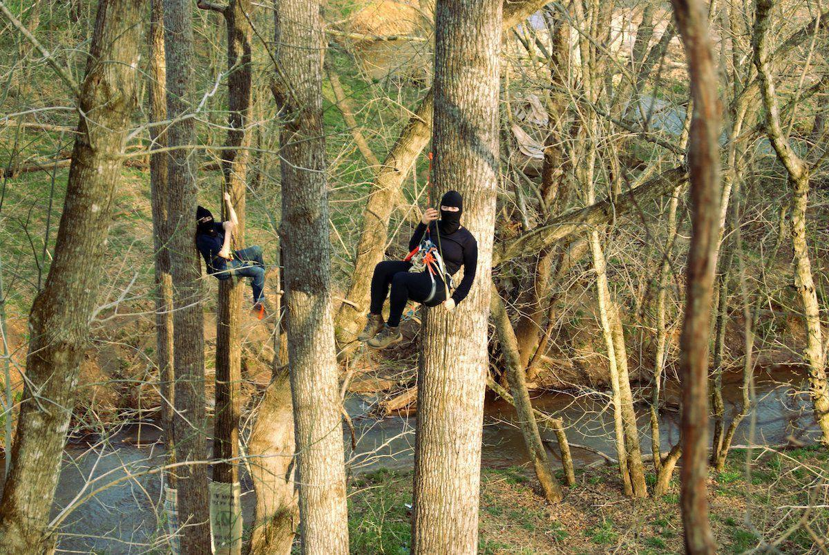 Franklin County tree-sitters