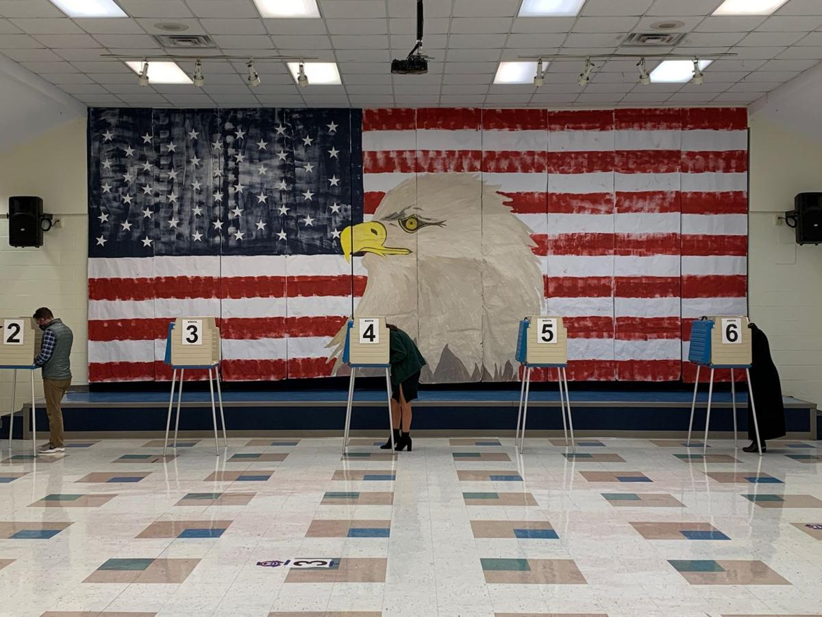 Voters cast their ballots at Robious Elementary in Chesterfield