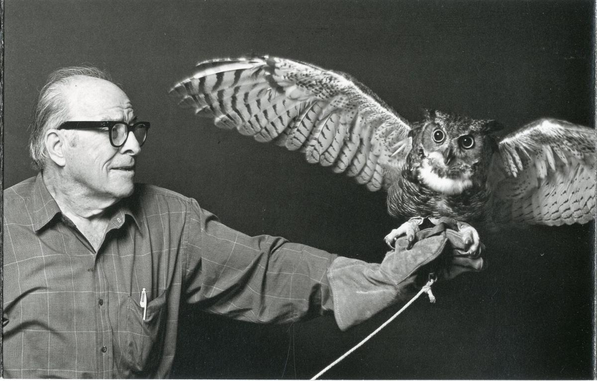 both owls.jpg