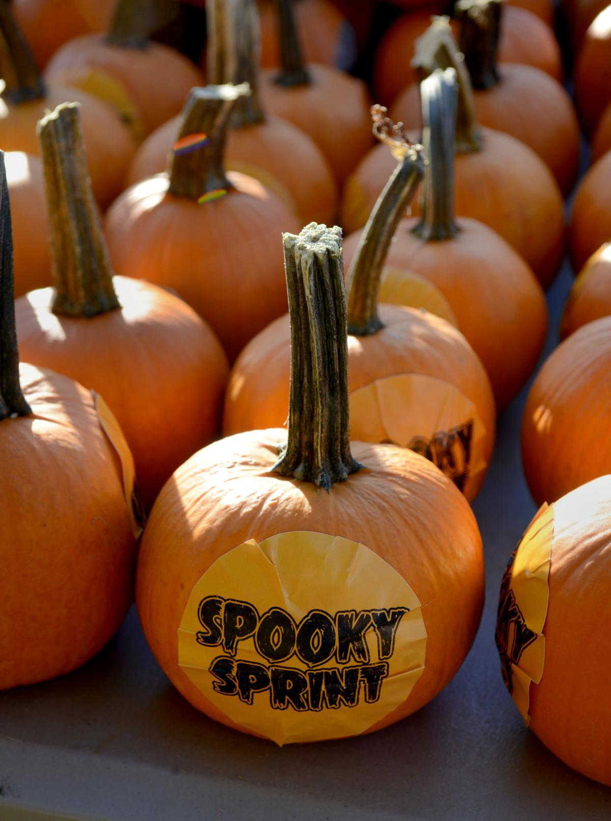 Sprint Roanoke Va >> Costumed Characters Frighten Up Funds At Spooky Sprint 5k