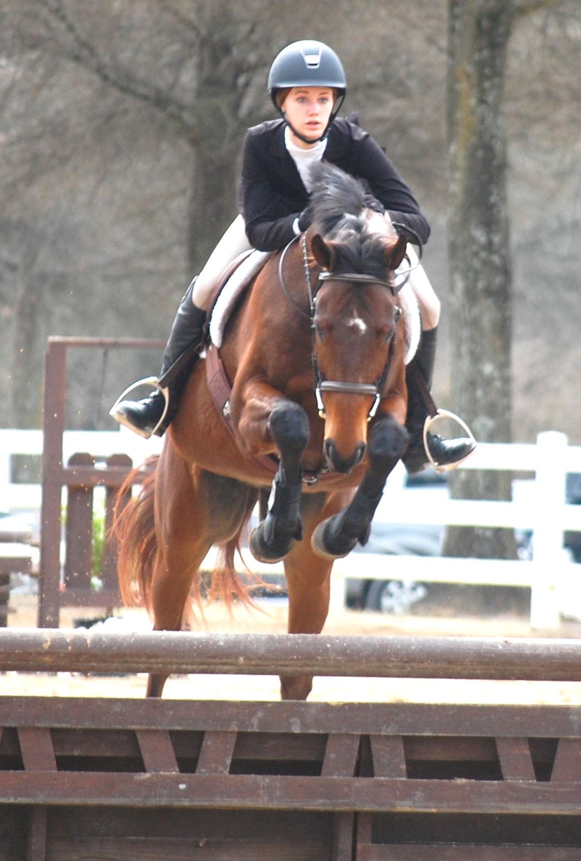 Hunter/Jumper season opens at horse park