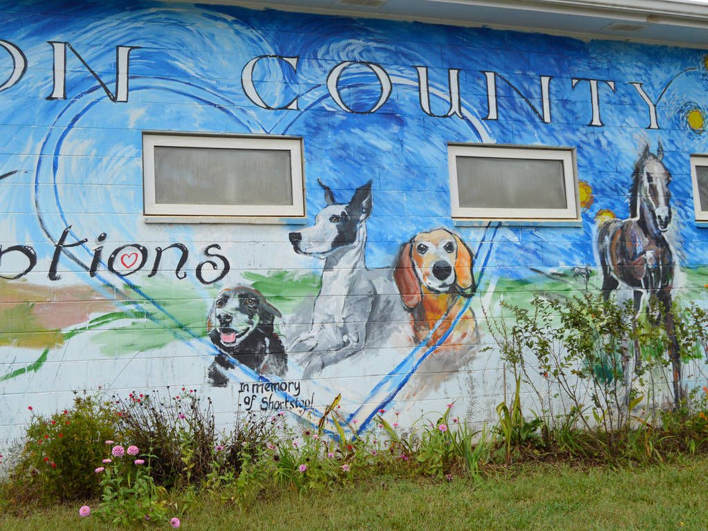 Newton County Animal Control facility to upgrades
