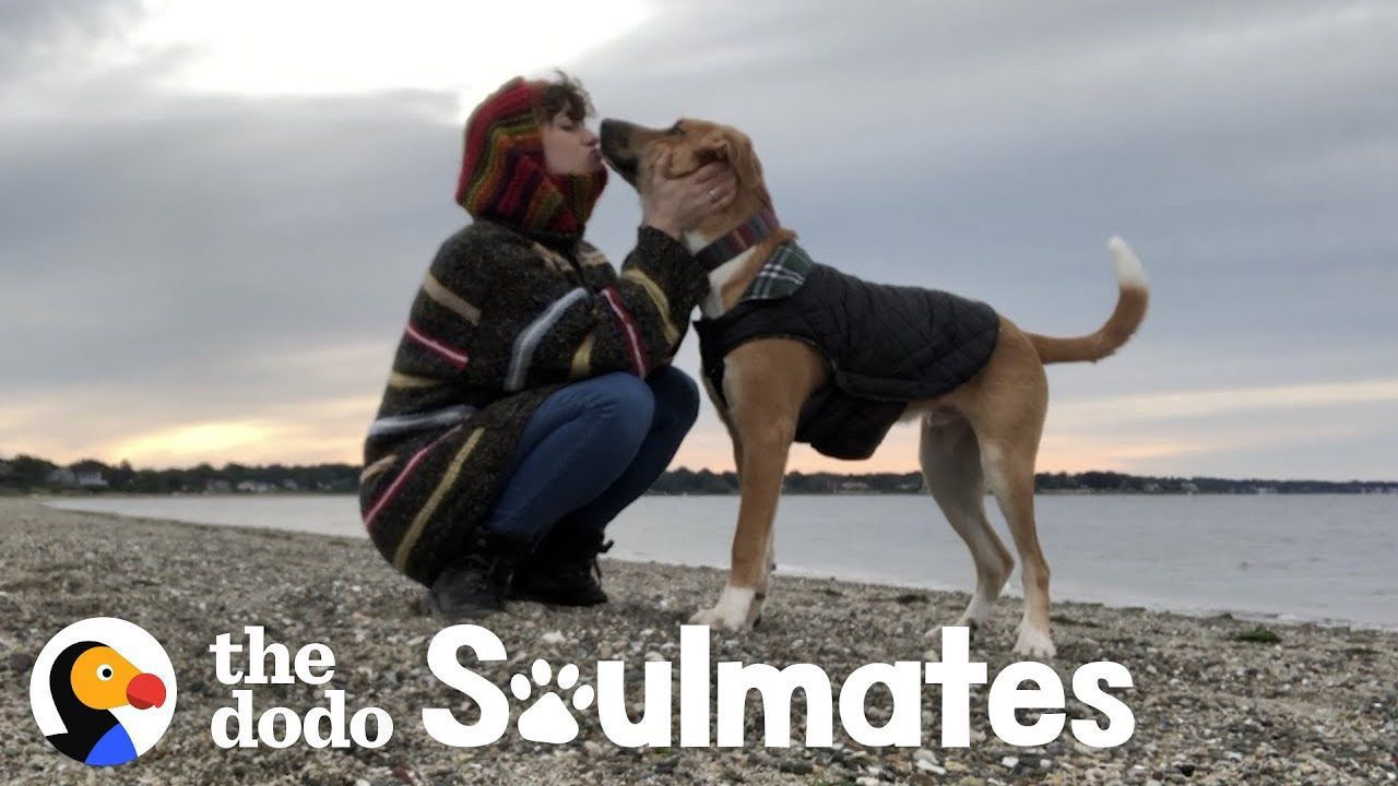 Anxious Dog Gets Completely Transformed By His Mom's Love | The Dodo Soulmates