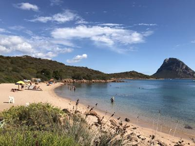 Dozens of tourists fined after police seize 200 pounds of sand and shells taken from Sardinia's beaches