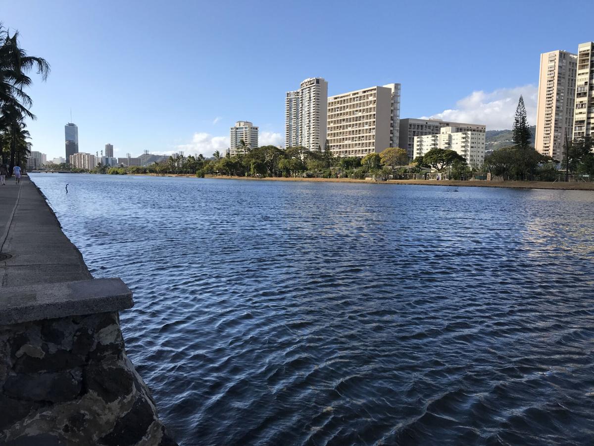 Waikiki 2.jpg