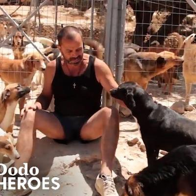 Man Gives Every Dog He Saves The Best Life | The Dodo Heroes