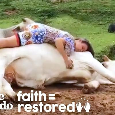Rescued Animals Melt Into This Woman's Arms When She Sings To Them   The Dodo Faith = Restored