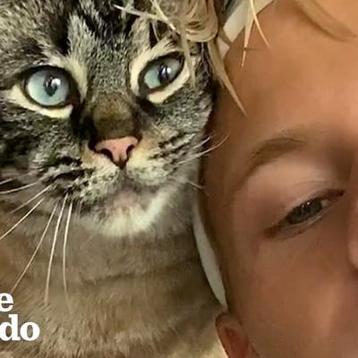 Clingy Cat Has To Be With Dad 24/7 | The Dodo Soulmates