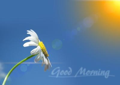 Good morning 1.jpg