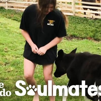 Girl Plans To Grow Old With Her Cow | The Dodo Soulmates