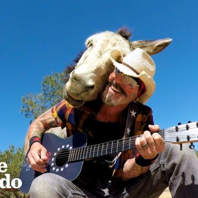 This Donkey Loves When Her Favorite Human Plays Guitar | The Dodo