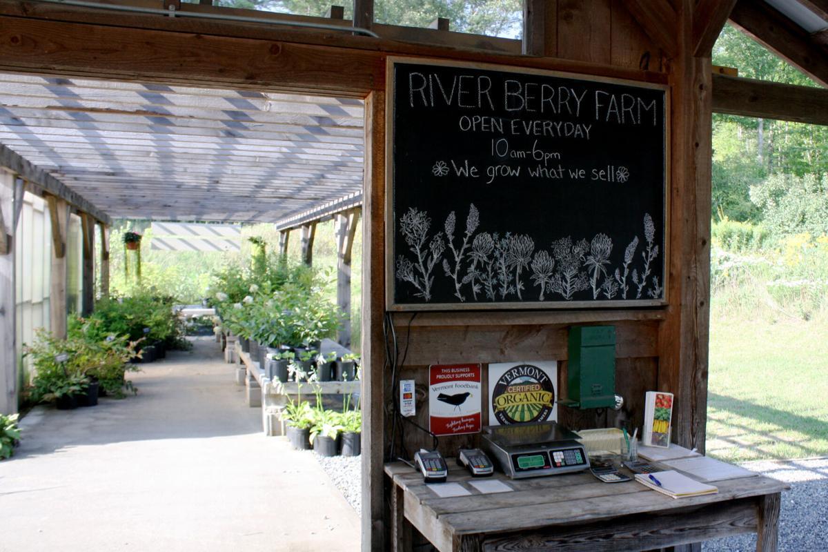 River berry farm