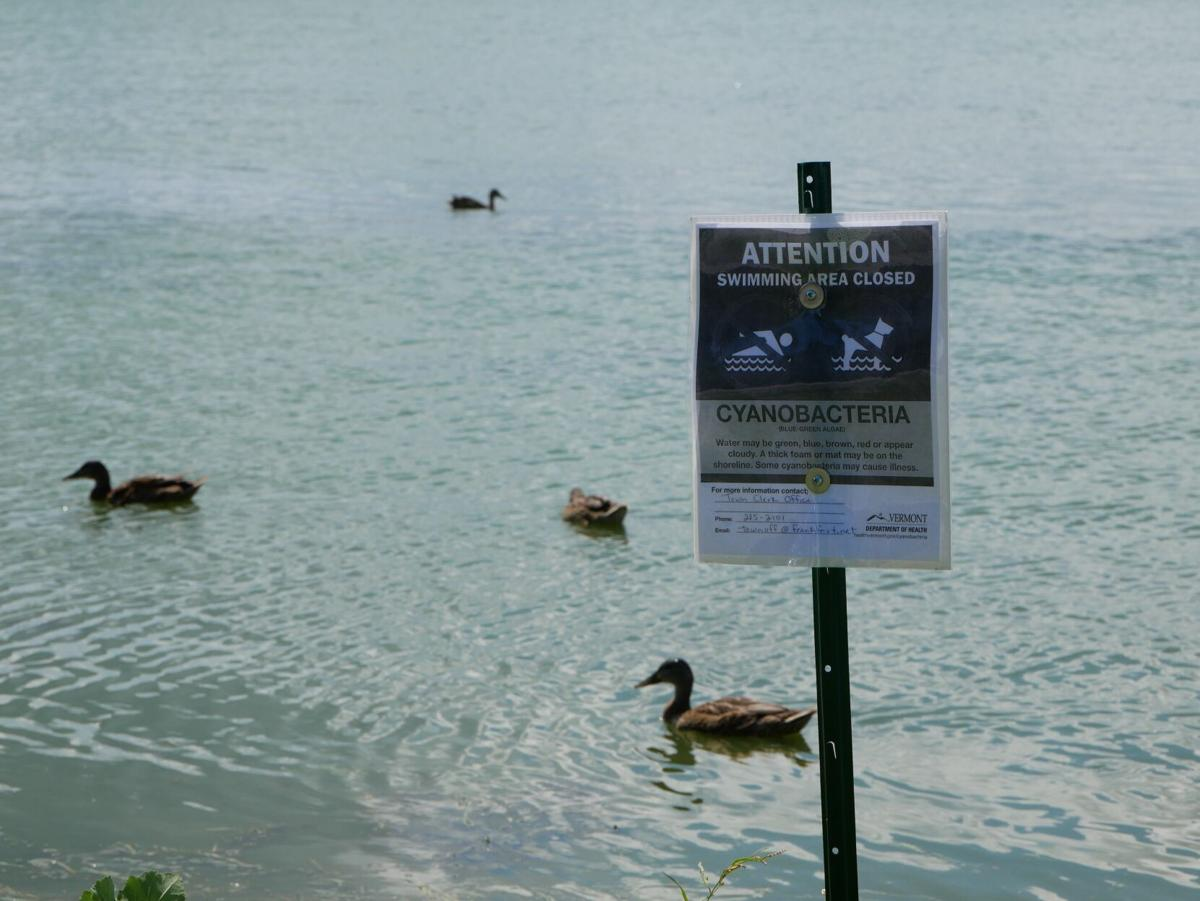 Lake Carmi, 7-30-2020