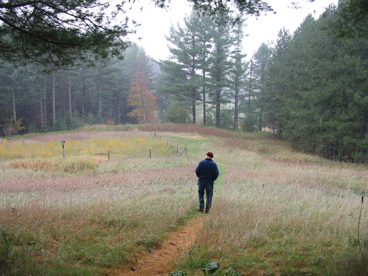 Peter A. Krusch Nature Preserve - fall