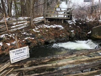 A Winooski man has been charged with fishing in Hatchery Brook near the Grand Isle Fish Culture Station and faces several hundred dollars in fines and restitution.
