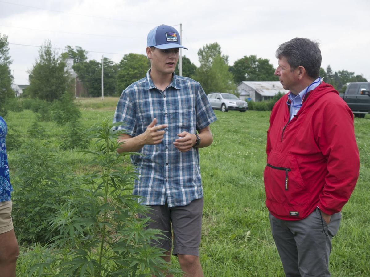 A growing industry: Hemp brings challenges, opportunities