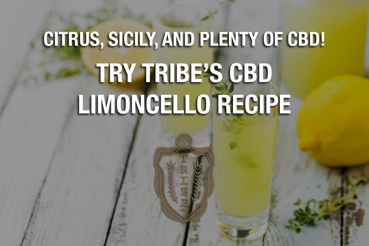 Tribe CBD Limoncello - 1