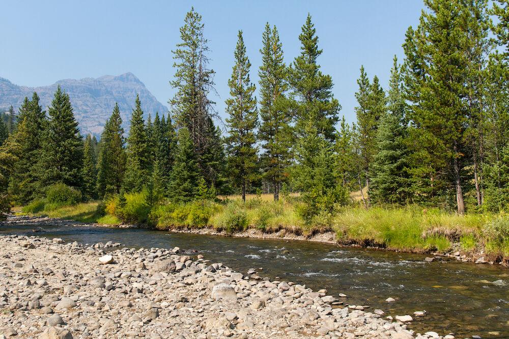 Montana - Lamar River