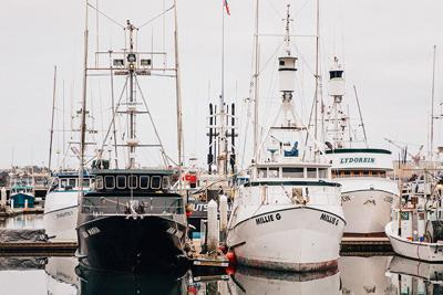 A Deep Dive into the San Diego Fishing Industry