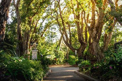 Inside The Icon San Diego Botanic Garden Neighborhoods Sandiegomagazine Com