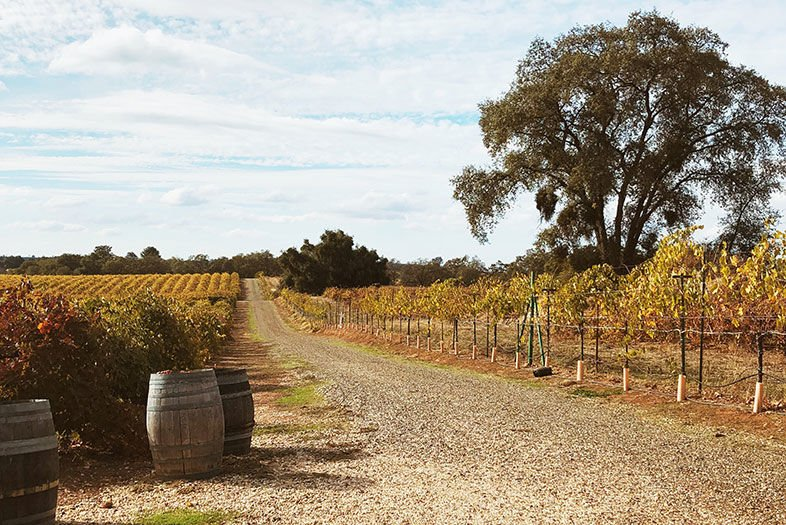 3 Days in Amador County: Where to Eat, Drink, and Stay