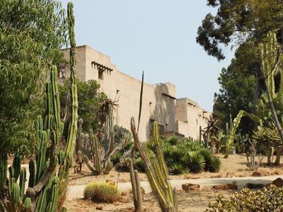 Gardens / 1935 Cactus Garden