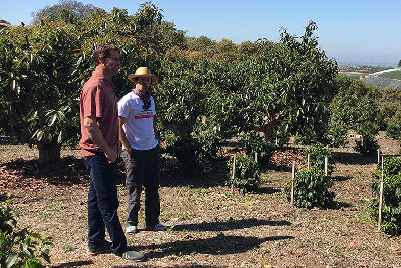 Jason Mraz Is Growing Coffee On A Farm In Oceanside Q A Sandiegomagazine Com