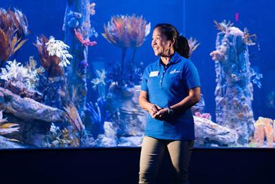 Meet the Sea Dragon Breeder at Birch Aquarium