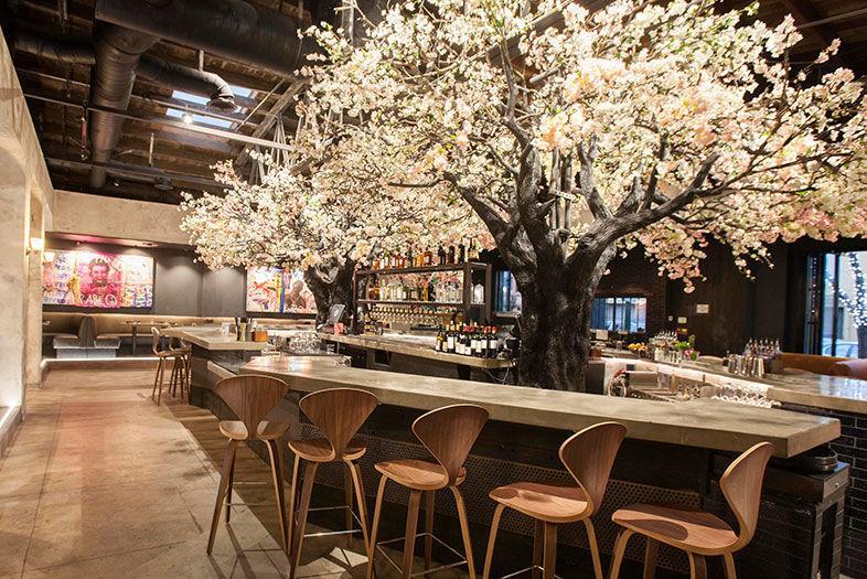 Cloak Petal Blooms In Little Italy Restaurants Sandiegomagazine Com
