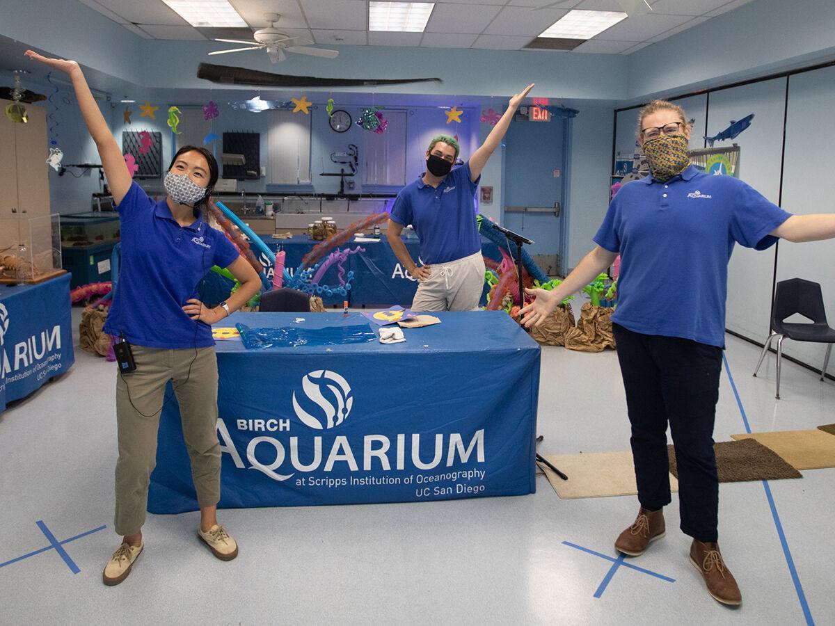 Good News / Birch Aquarium