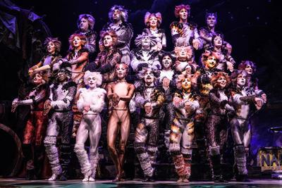 'Cats' the Musical Pounces into San Diego Civic Theatre